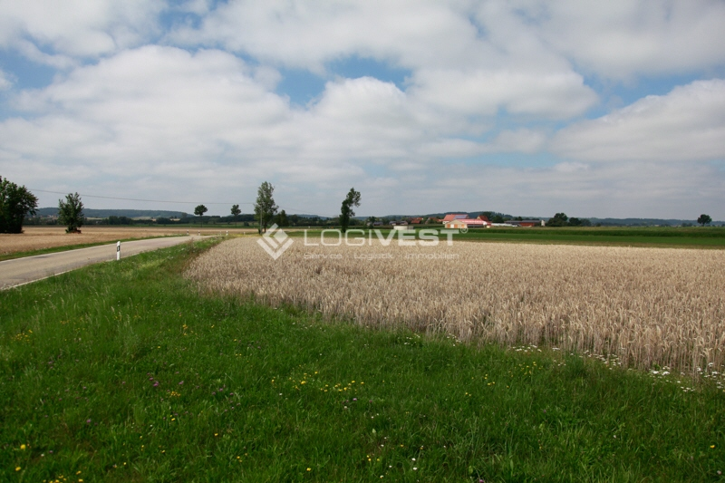 Vorschaubild Musterbild Grundstück