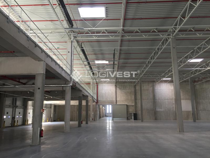 Vorschaubild Musterbild Halleninnenansicht mit Mezzanine