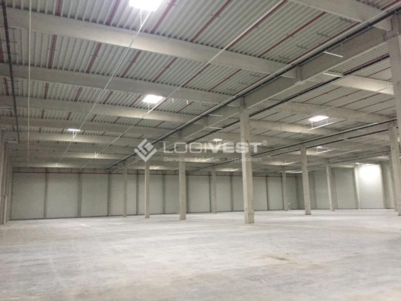 Vorschaubild Innenansicht Neubauhalle