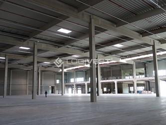 Mobile Vorschaubild Musterbild Halle Neubau Rahmen