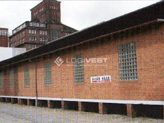 Mobile Vorschaubild Musterbild Halle Neubau